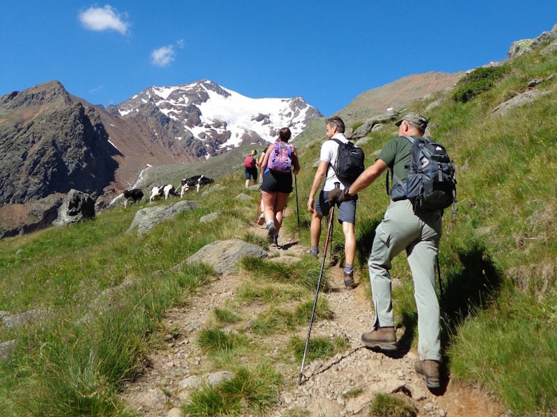 Trekking and Walks in Val di Sole