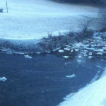 ghiaccio e neve al lago